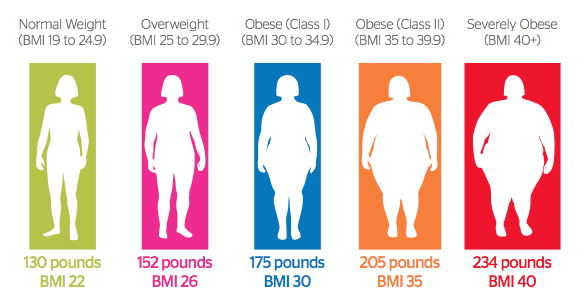 body mass index and body fat percentage chart