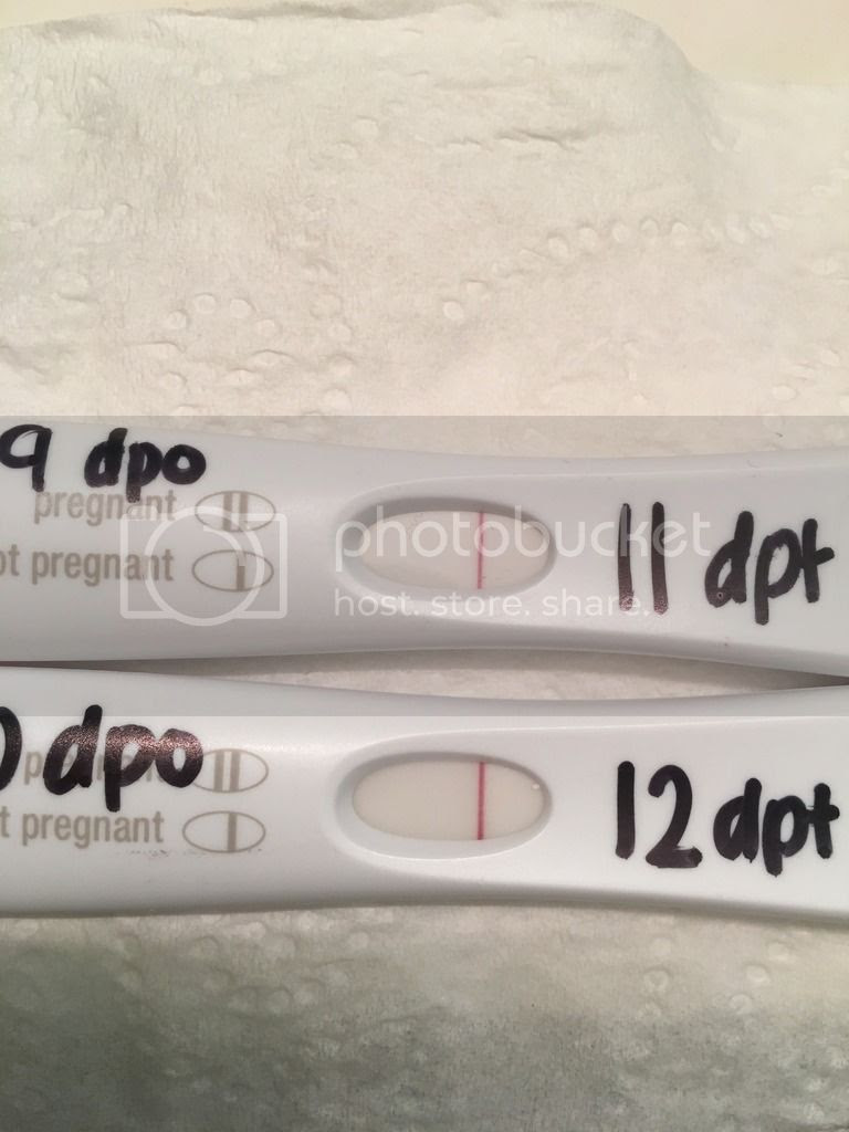 10 Days Dpo Pregnancy Test - Pregnancy Symptoms