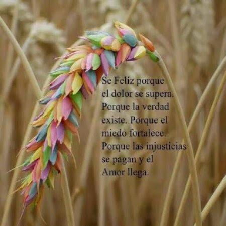 Se Feliz Frase Para Vivir En Armonia Imagenes Bonitas Frases Bonitas
