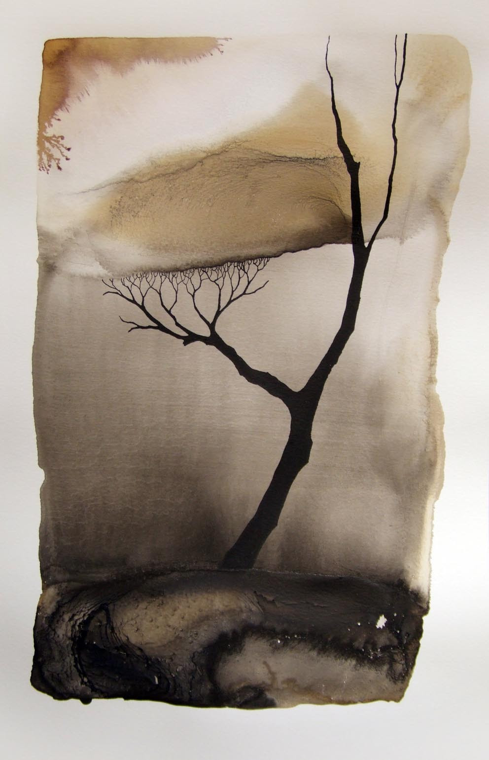 Pablo S. Herrero: Images of drought Chinese ink and white clay on paper