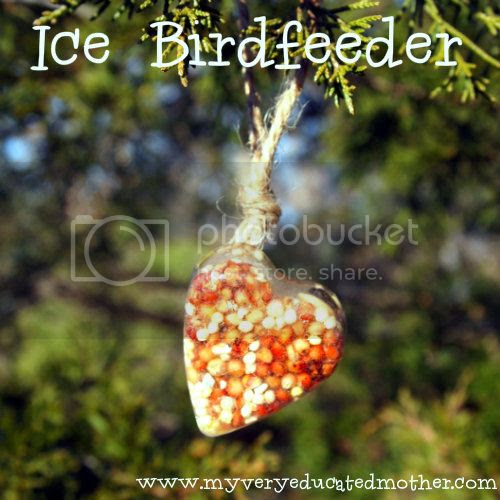 @mvemother Ice Birdfeeder #craftingwithkids #naturecraft