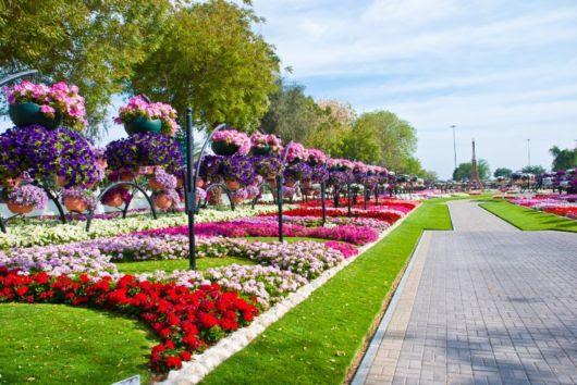 Perierga.gr - Ο μεγαλύτερος κήπος με κρεμαστά λουλούδια