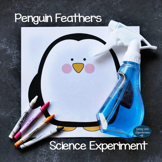 How Do Penguins Stay Dry? Penguin Feathers Science Experiment -