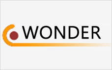 CDC Wonder databases