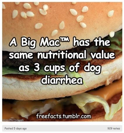 0dogdiarrhea.jpg
