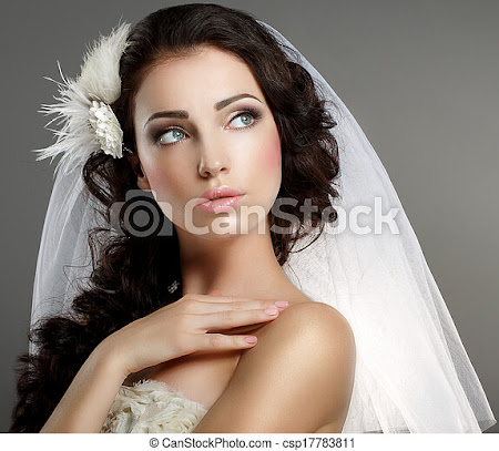 Stock Photography of Wedding. Young Gentle Quiet Bride in Classic White Veil... csp17783811 - Search Stock Photos, Pictures, Images, and Photo Clip Art
