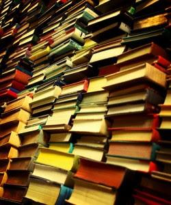 http://noticias.iberestudios.com/files/2010/02/mont%C3%B3n-de-libros-250x300.jpg