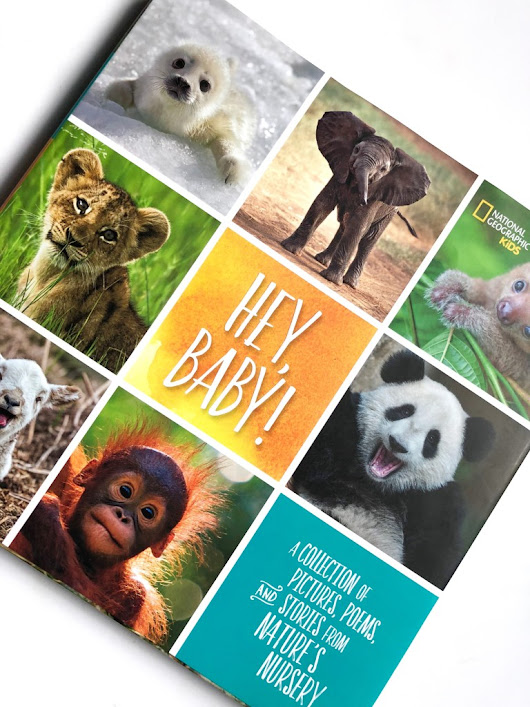 National Geographic Kids Hey, Baby! Book Review + Giveaway