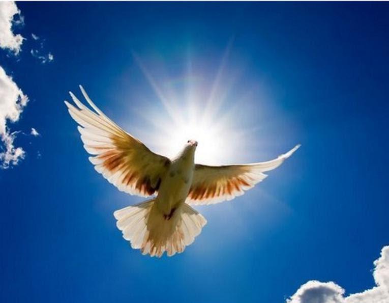 Conciertos Con Mensajes De Esperanza Y Fe En Jesucristo