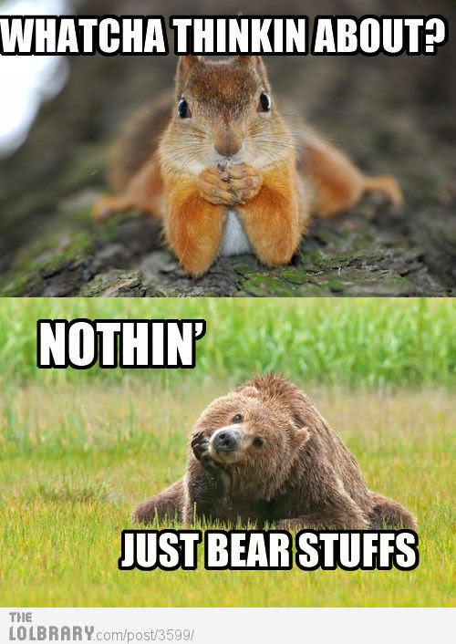 What are you thinking about bear? | LOLBRARY.COM