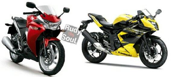 Ninja RR Mono 250 at