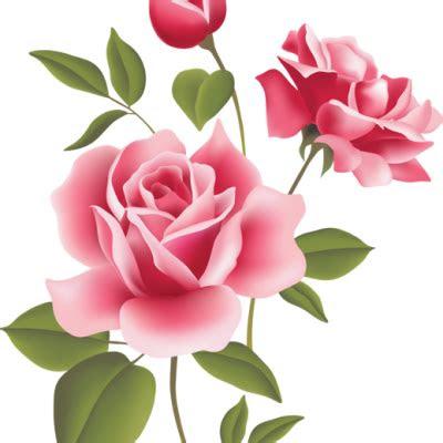 gambar pink rose clipart bunga mawar pencil color pin