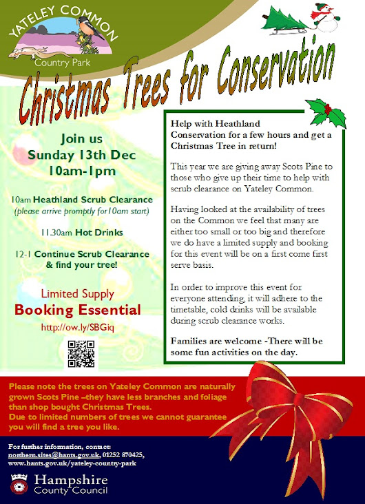 Christmas Trees for Conservation on Yateley Common