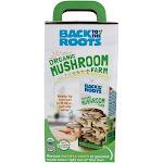 Back to the Roots Organic Mushroom Farm