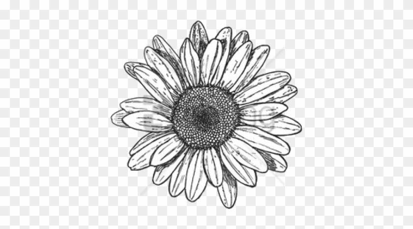 Wallpaper Sunflowers Tumblr | Vilma Lii - Free Wallpaper