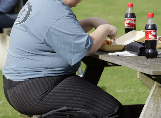 Almost one-third of us are fat, says new study | Toronto Star