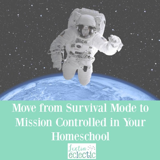 How to Move From Survival Mode to Mission Controlled - Lextin Eclectic