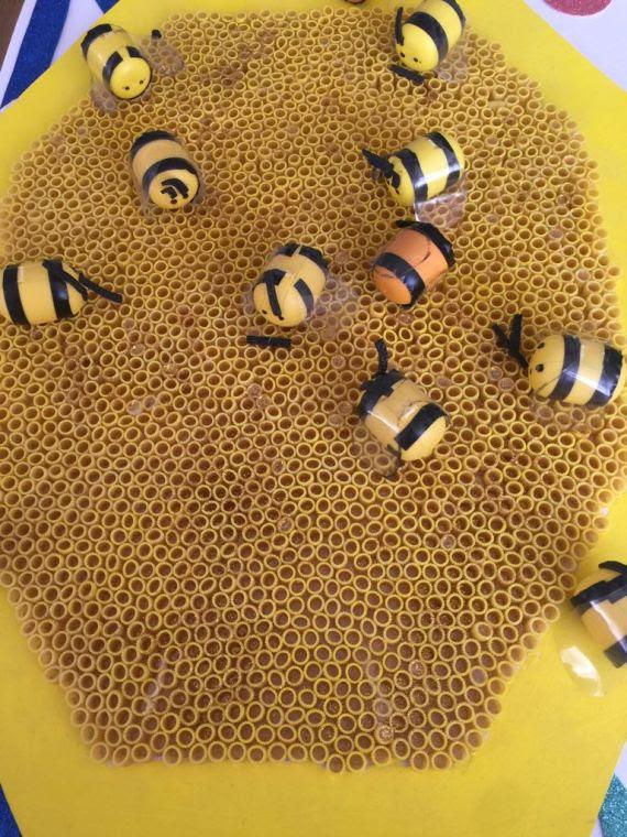 Arı Kovanı Eğitim Bilişim Ağı