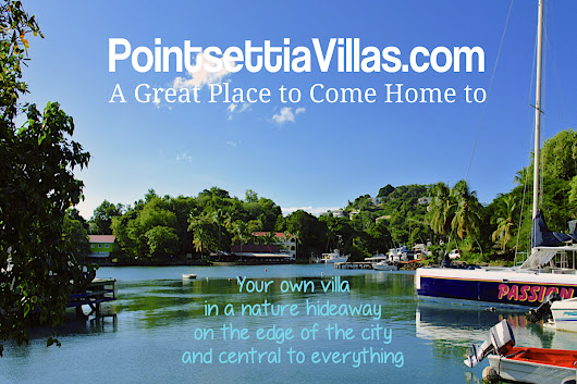 New Promo for PoinsettiaVillas Oasis On the Edge of the City - Poinsettia Villas St. Lucia