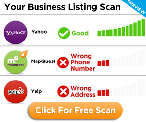 300x250 Your Business Listing Scan
