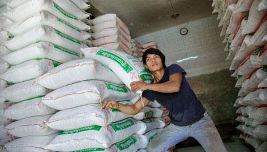 A worker stacks sacks of rice in Phnom Penh earlier this year.
