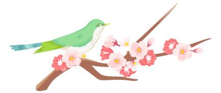 うぐいすと桜 フリー素材かわいい花のイラストのまとめ個人