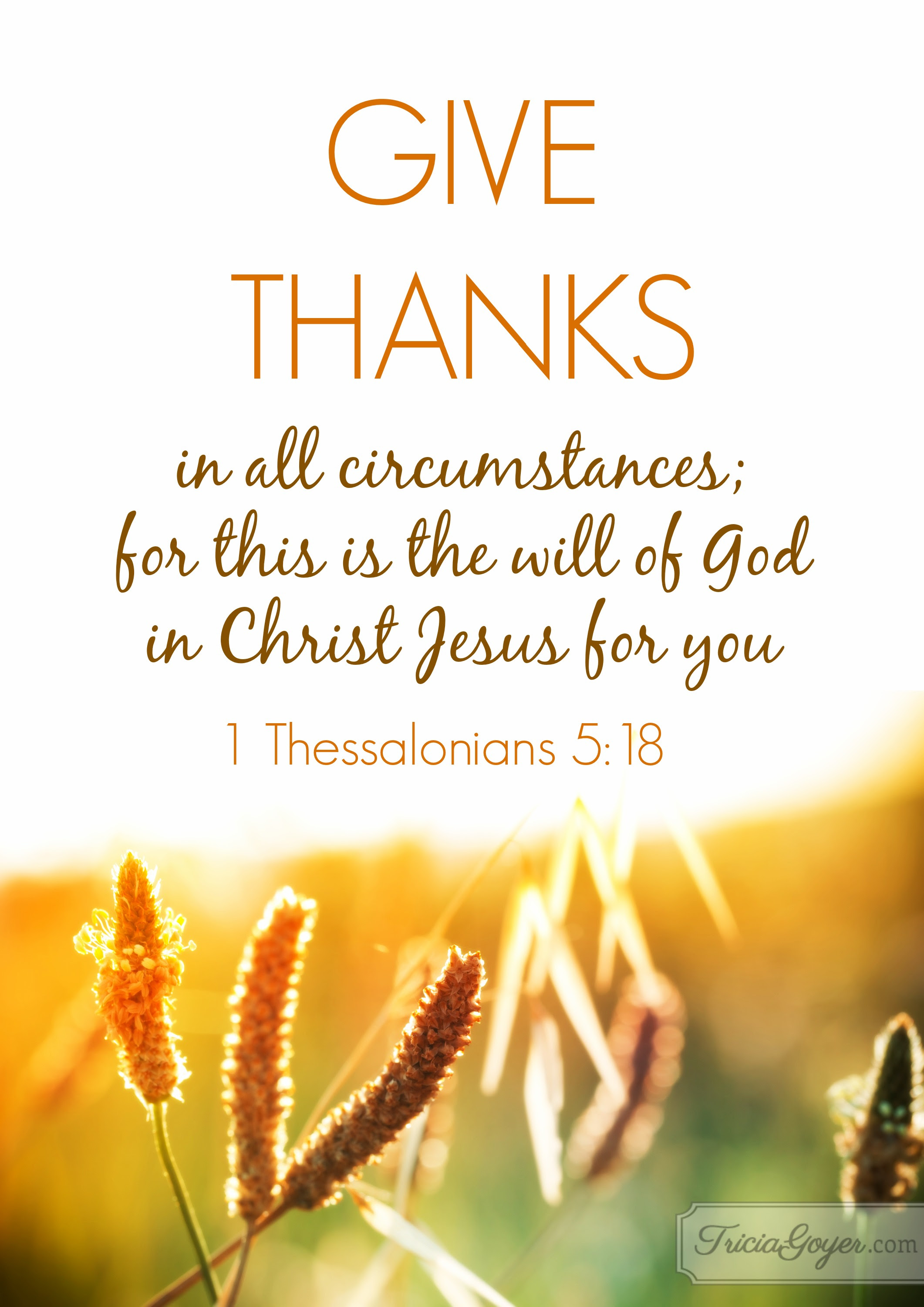 Image result for i thessalonians 5:18
