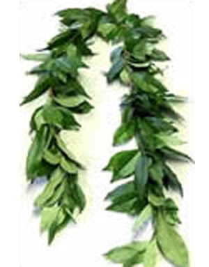Tea Leaf Lei : Fresh, Hawaiian, Wedding