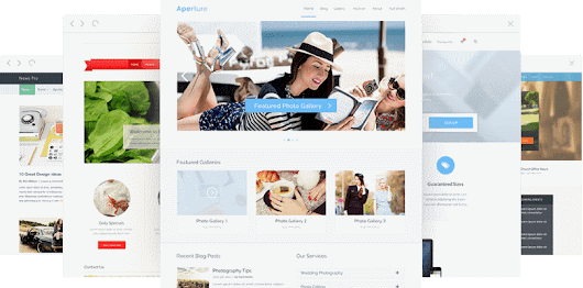 Best WordPress Themes 2016