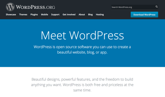 6 Reasons Why Developers Should Choose WordPress for an Enterprise Site | @thetorquemag