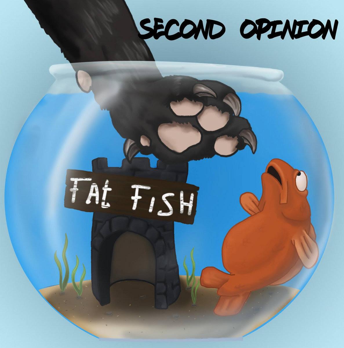 www.facebook.com/secondopinionband