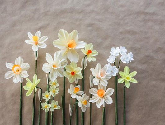 10 Fall Bulbs To Order Now For a Beautiful Spring – Design*Sponge