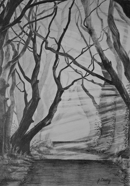 Dark Hedges, Pencil
