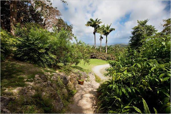 hobitska hiša na Barbadosu - 5