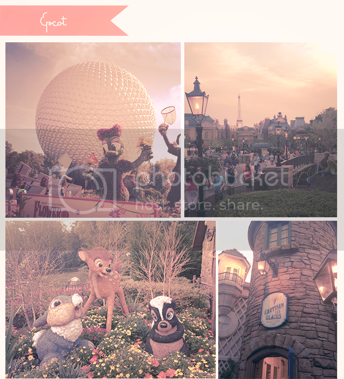 photo disneyworld_epcot_zps74bb2b19.png