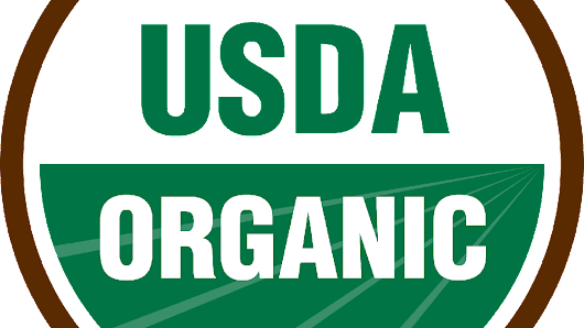 Gardening Etcetera: Are organic foods really better? Yes.