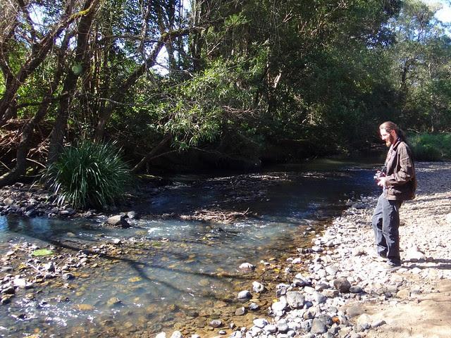 Tweed River, Mt Burrell