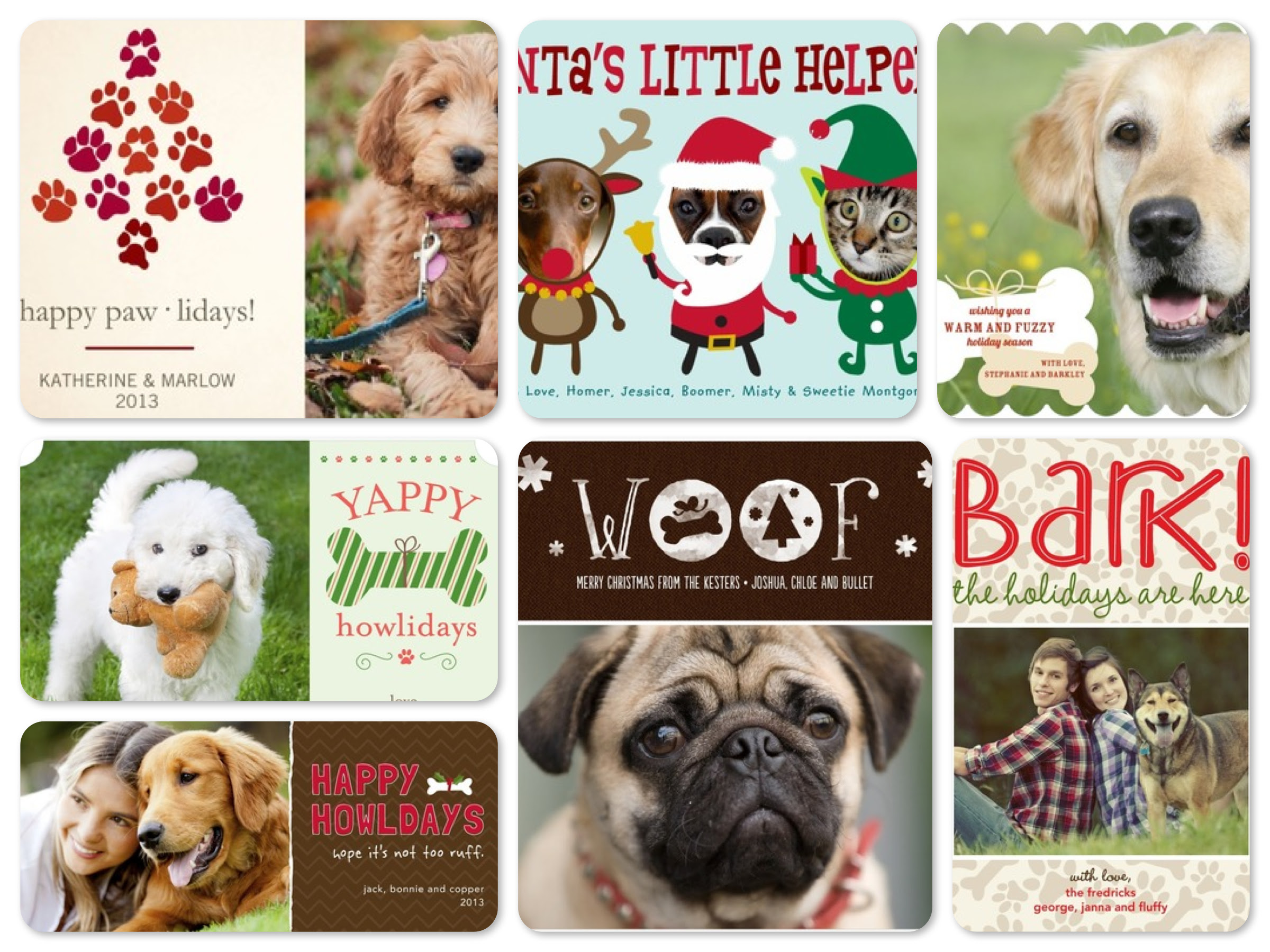 Christmas cards pet photo christmas pix m4hsunfo