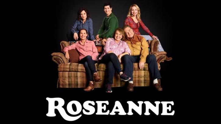 Roseanne - Ames McNamara cast as David and Darlene's son, Mark