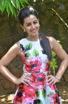 Nikki Galrani New Photos :24-05-2016