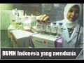 Memperkenalkan Badan Usaha Milik Negara Indonesia(BUMN) ,Part 1