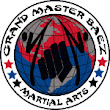 Master Baez Karate Day Camp 2015