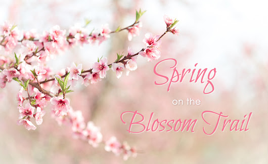 Spring on California's Blossom Trail | Try Something Fun