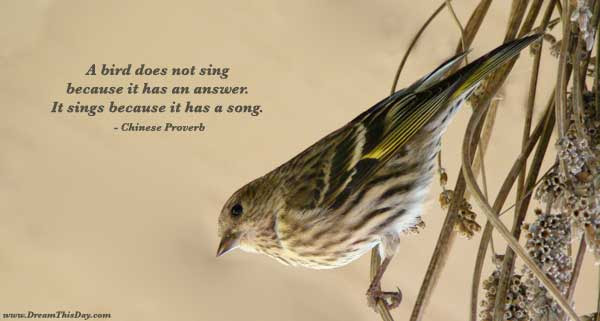 Song Quotes And Sayings Quotes About Song And Love