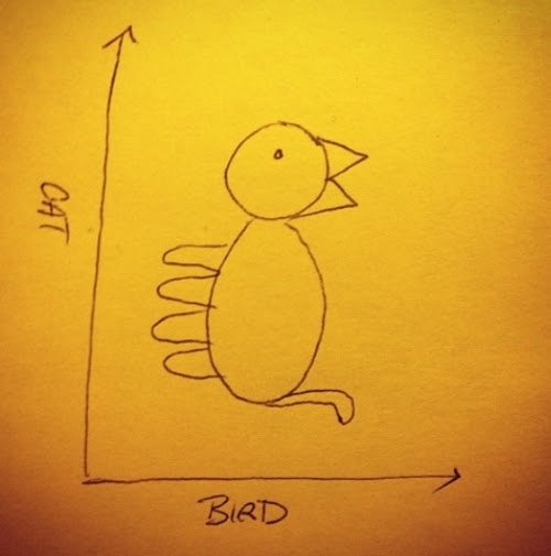 Cat-bird graph