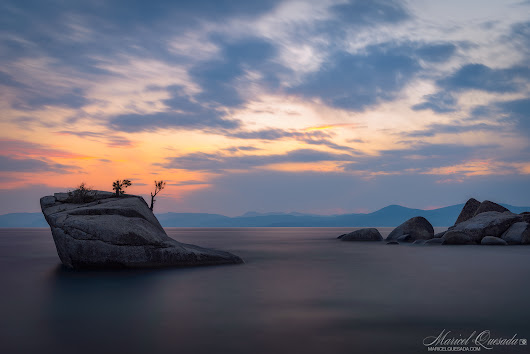 Bonsai Rock - Maricel Quesada Photography
