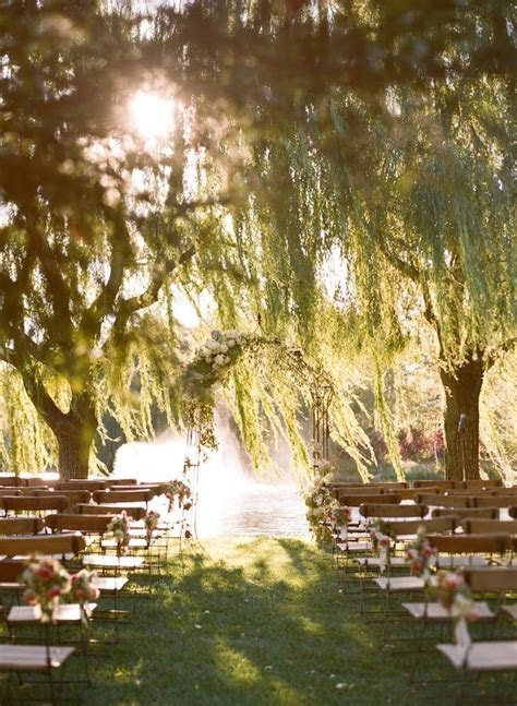 Best 25  Willow tree wedding ideas on Pinterest