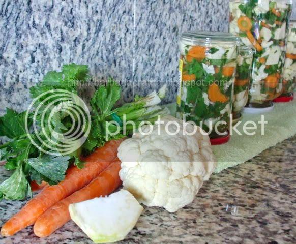 -Salata-asortata-pentru-iarna-10