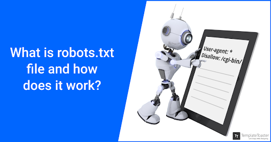 What is robots.txt File and How Does It Work?