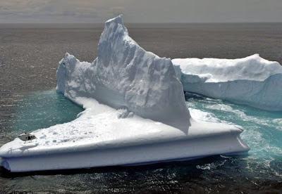 Iceberg Dunedin